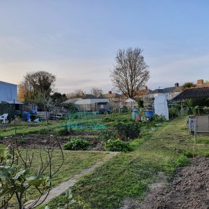 Station Approach Allotments